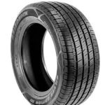 Arizonian Silver Edition III Tires - Review and Complete Guide