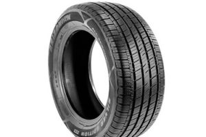 Read more about the article Arizonian Silver Edition III Tires – Review and Complete Guide