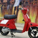 Honda Spree Scooter Review and Specs