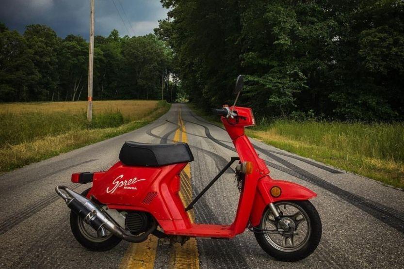 honda spree scooters